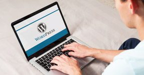 Postavitev WordPress strani